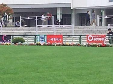 今話題の女性騎手藤田菜七子さんは茨城県守谷市出身!