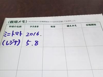 DSC_4907.JPG